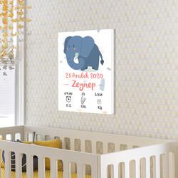 Kız Bebek Doğum Günü Bilgileri Hatıra Tablosu - Thumbnail